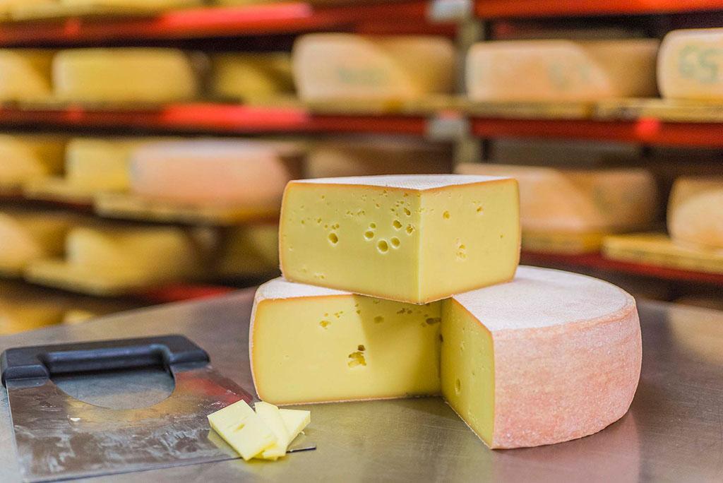 Käse im Vinschgau, Kaswandern, Wanderungen Südtirol